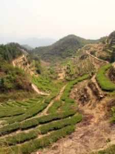 Breathtaking views of Anxi