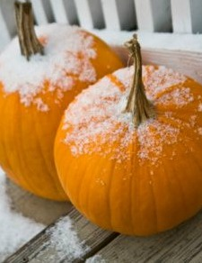 Even our pumpkins were chilly!