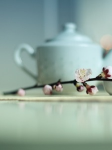 What best describes your tea service?