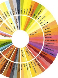 A flavor wheel can be handy for describing teas.